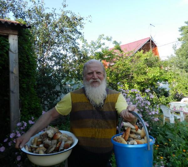 Лорик в Шаре и белые грибы 2014 015