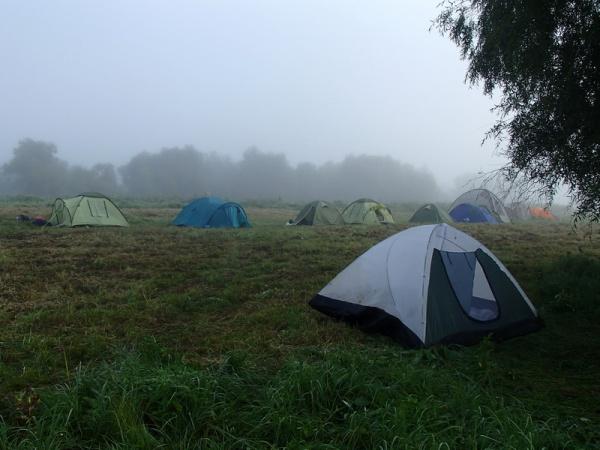 8240136 утро туманное