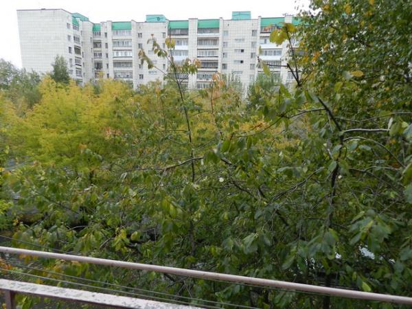 вид с балкона 002