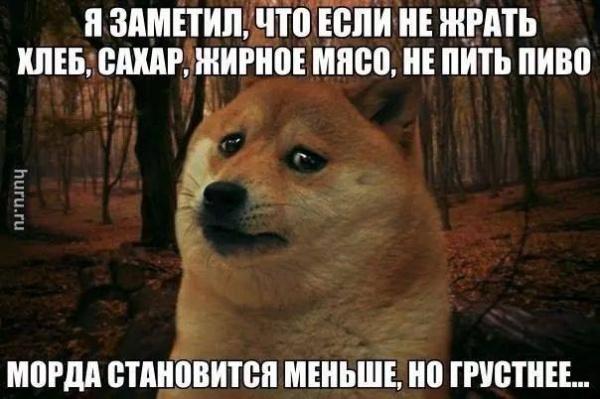 humor21