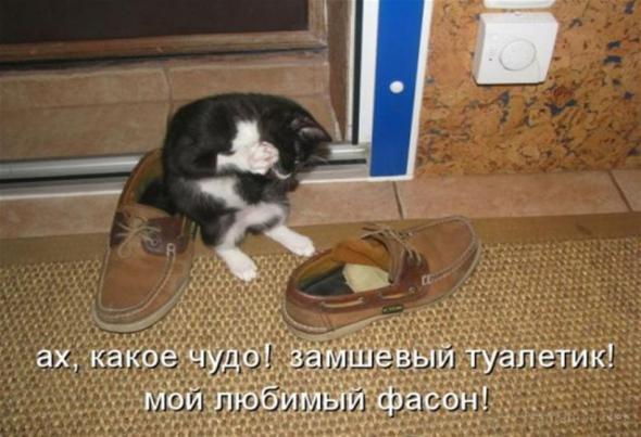 юмор_33