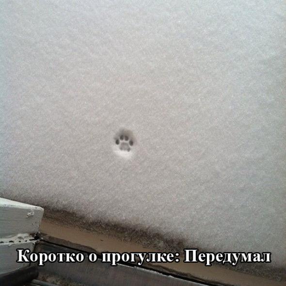 humor_15