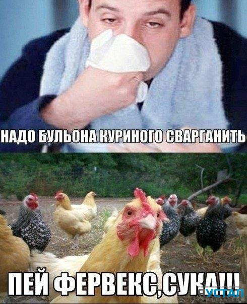 humor___39