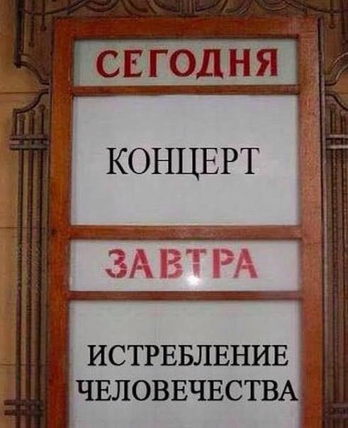humor___51