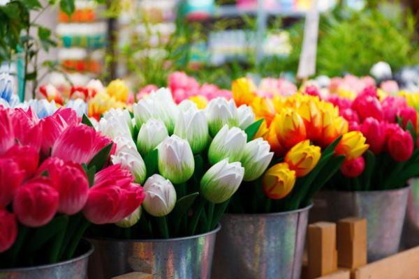 wooden-tulips
