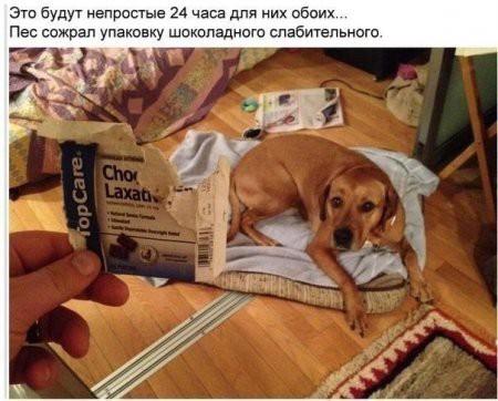 humor_05_06_32