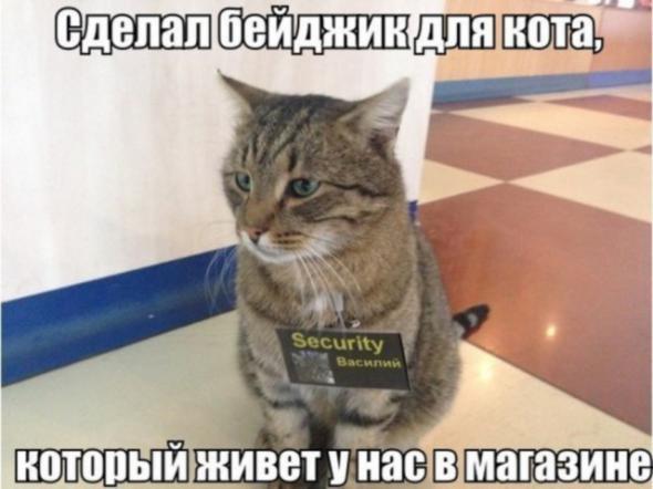 humor_05_06_35