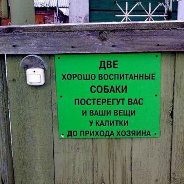 humor_05_06_50