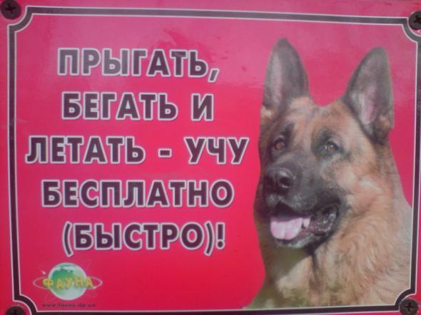 humor_05_06_67