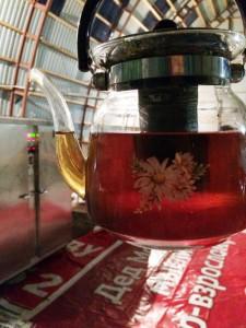 по цвету тюменский чай из Иван-чая ничем не отличается от обычного черного