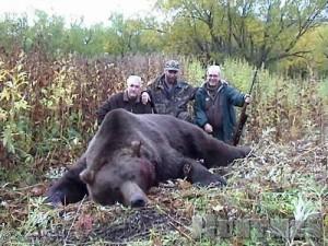 1352995919_kamchatskiy-medved