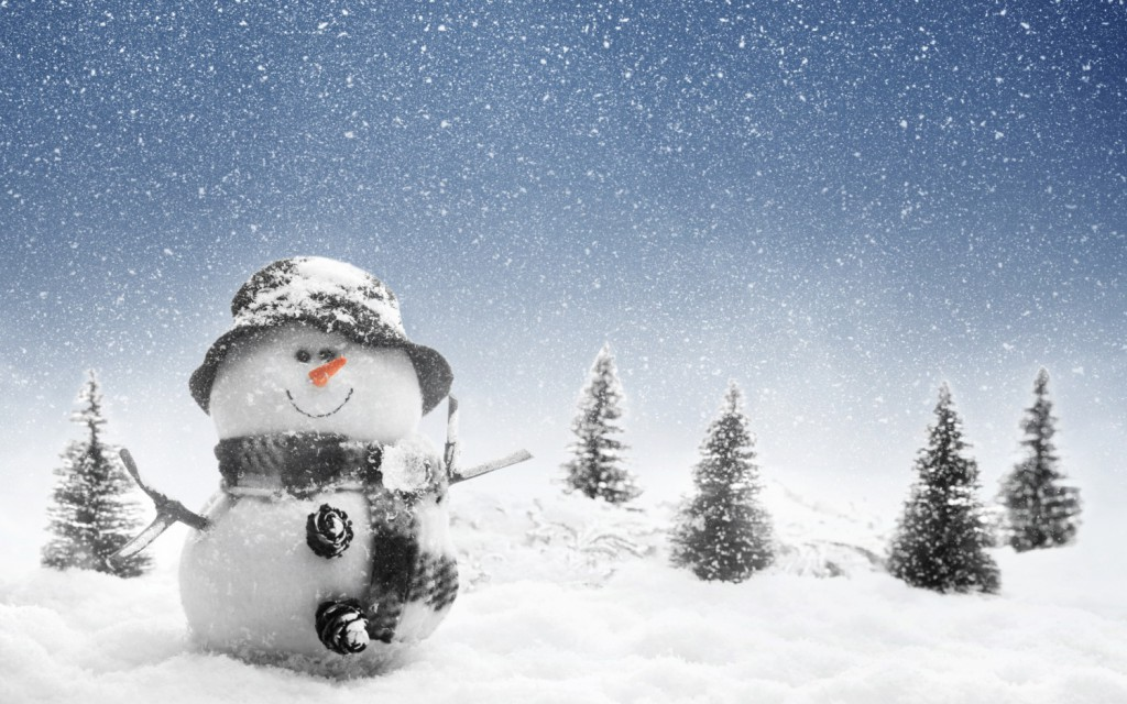 New_Year_wallpapers_New_year_s_snowman_035314_