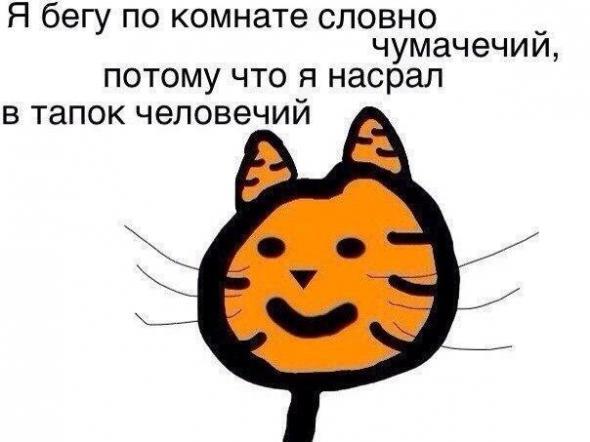 humor_2_10_20151