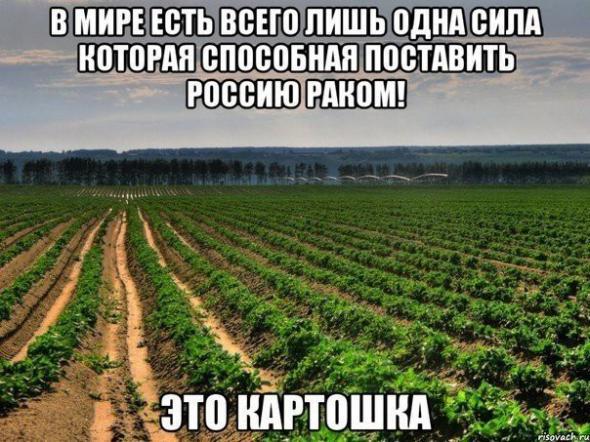humor_2_10_201510