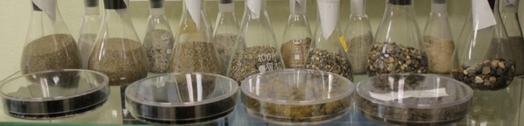 Образцы песков, глин, гравийно-песчанных смесей из коллекции Департамента недропользования и экологии Тюменской области.jpg