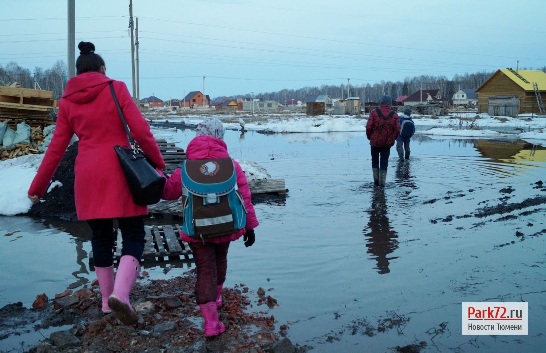 8 Путь в школу для пятерых детей семьи Пастушок начинается так_result