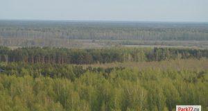 Тюменские леса разрешили использовать для устранения паводка в Ишиме_result