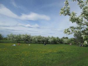 Парк Заречный