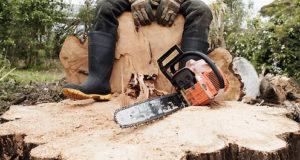 ss-dirty-jobs-2011-swamp-logger