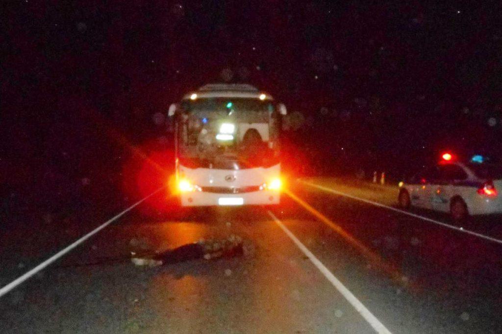 В Тюменском районе в 21 час 45 минут на 16 км автодороги Тюмень-Омск автобус «Хайгер» сбил пешехода, мужчину 54-х лет
