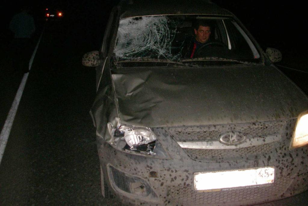 Трагедия случилась около 23 часов на 66-м километре автодороги Ишим-Бердюжье