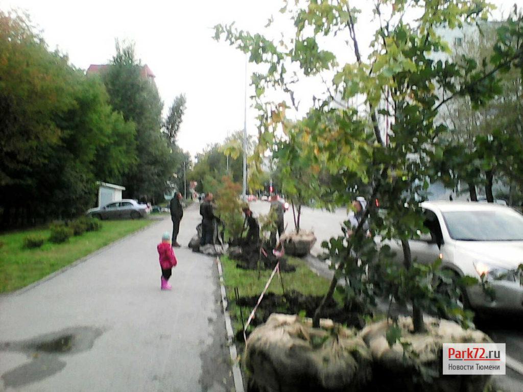 park_dubki_2