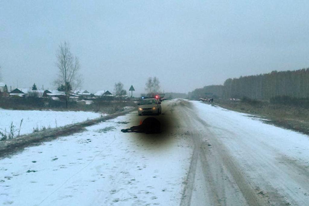 В пять часов утра на 9-м километре автодороги Голышманово – Бердюжье в Голышмановском районе автомобиль «УАЗ» сбил вышедшую на дорогу лошадь