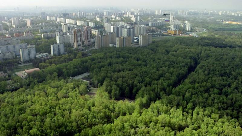 """Закон о создании """"зеленого щита"""" вокруг крупных городов"""