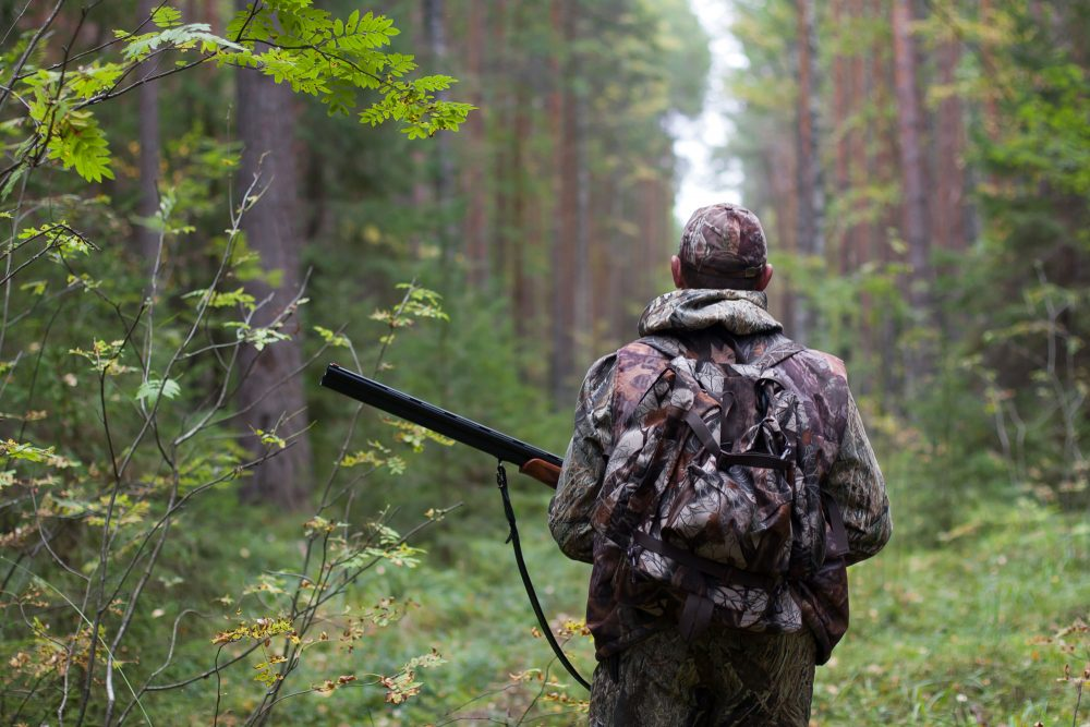 Скачать игру охота через торрент без регистрации бесплатно