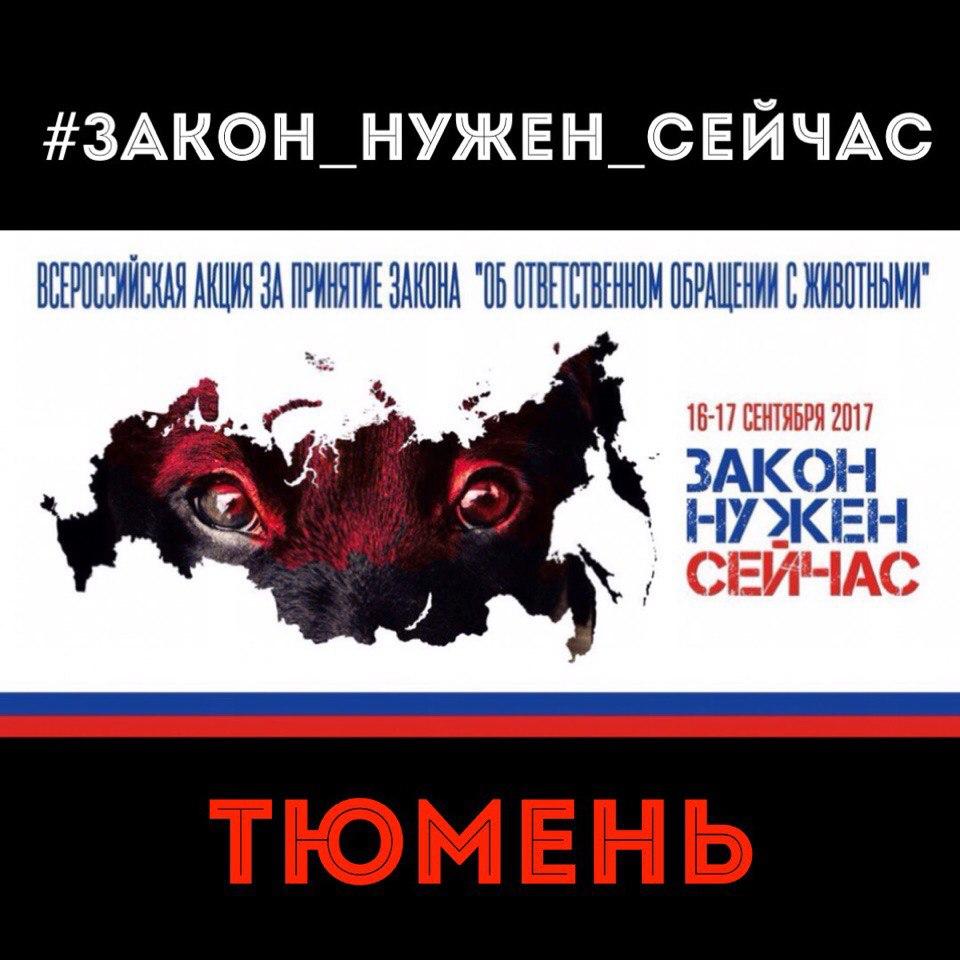 ВТюмени прошел митинг вподдержку «антиживодерского» закона: собрано порядка 200 подписей