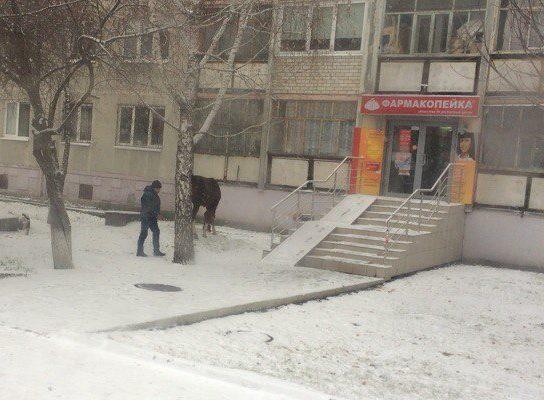 Сильный ветер иснег: что ожидает граждан Тюменской области вближайшие дни