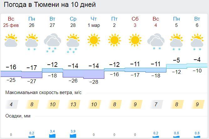Новости гисметео о погоде, природе и космосе ожившая сказка: в москве открылась выставка художника михаила шемякина.